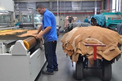 industria del cuero